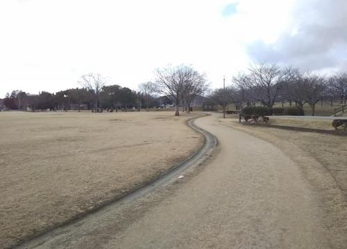 七瀬公園r3.1.152.jpg